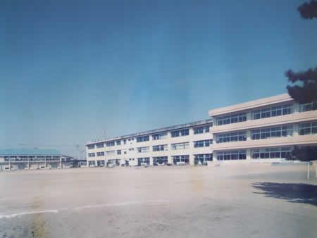 1982年